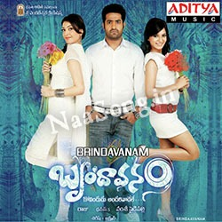 Brindavanam Audio Cover