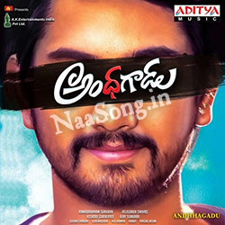 Andhhagadu Audio Cover