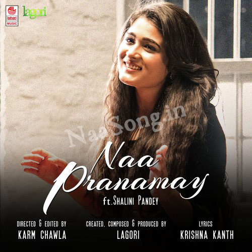Naa Pranamay Audio Cover, Original Motion Picture Soundtrack, Photos, Audio CD Cover, Front Covers